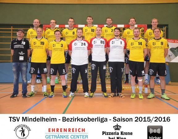 TSV Mindelheim Handball Herren I 2015/16