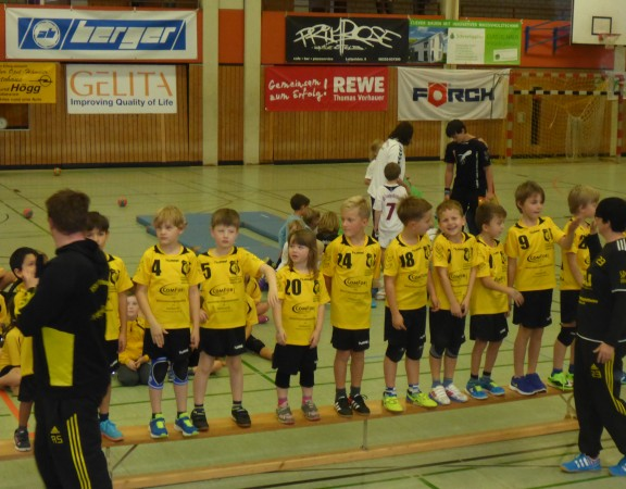 tsv mindelheim handball